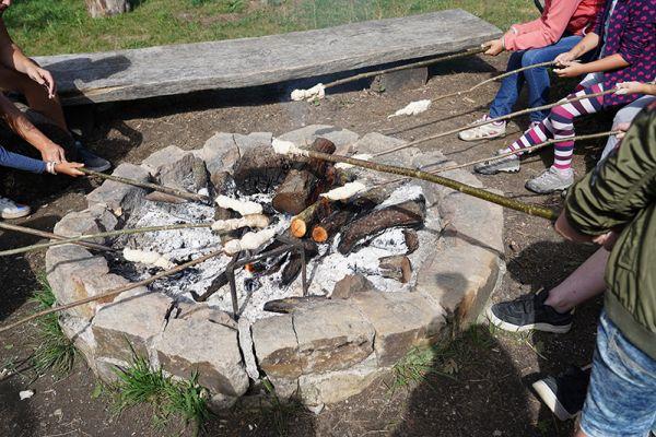 feste-am-grillplatz18D2A722-4A1F-FCB4-A191-08C453230C79.jpg